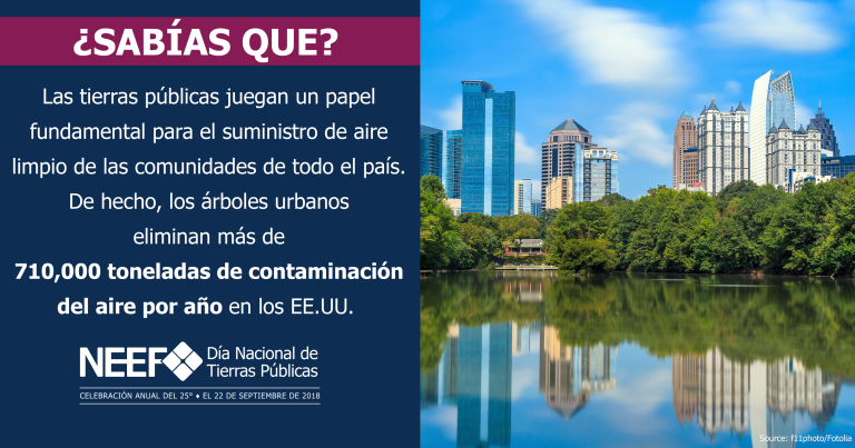 SOCMED18-NPLD-FunFacts-TreesPollution-Spanish-2540x1334.png
